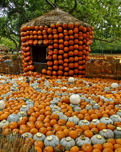 Another kind of gourd house by Allen Sheffield is licensed under CC BY 2.0