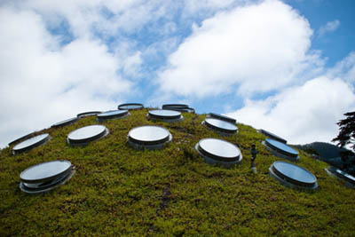 Living Roof by Anna Fox is licensed under CC BY 2.0. (Photo of the California Academy of Sciences)