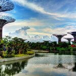 """Supertrees"" by Khairul Nizam is licensed under CC BY 2.0"