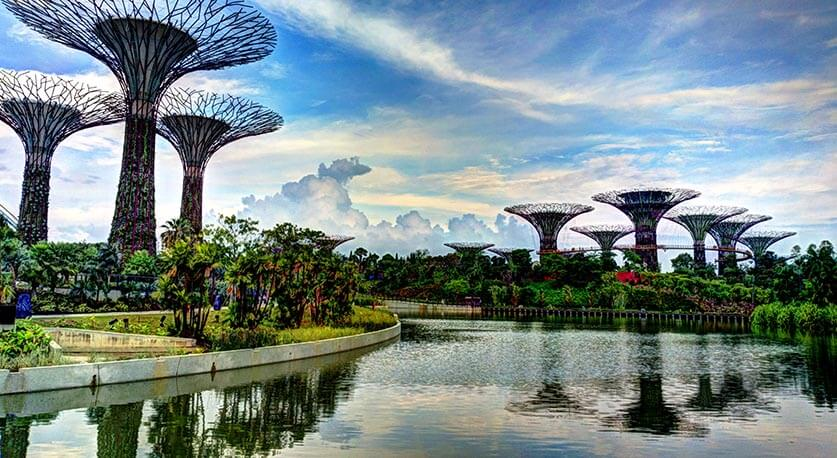 """""""Supertrees"""" by Khairul Nizam is licensed under CC BY 2.0"""
